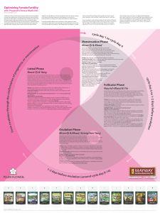 Fertility brochure jpg - 002.jpg