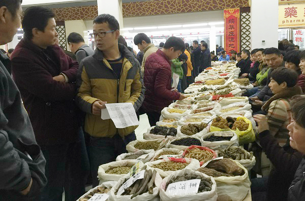 Bozhou Herb Market