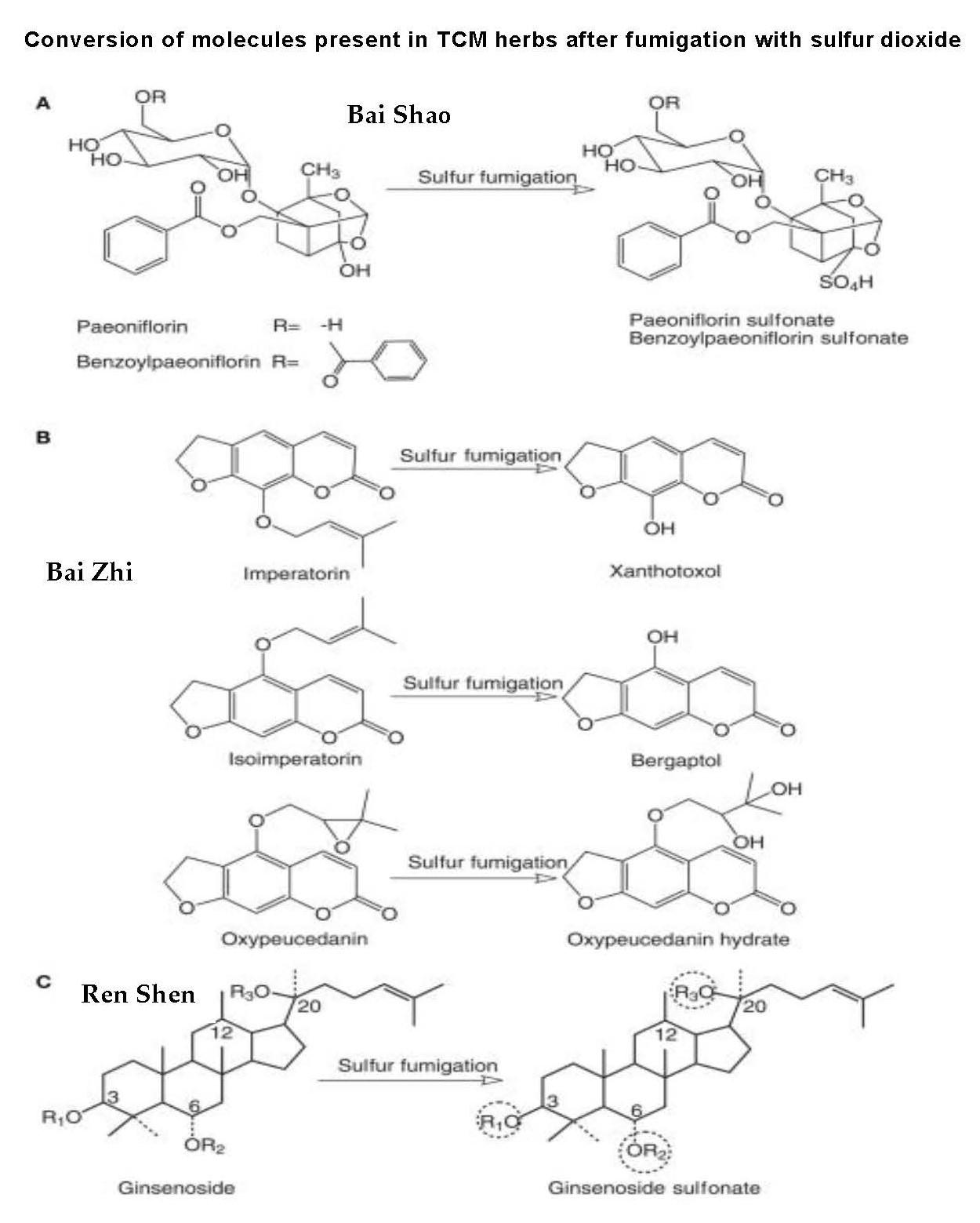 molecule conversion in herbs