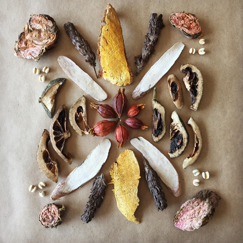 Herb Mandala