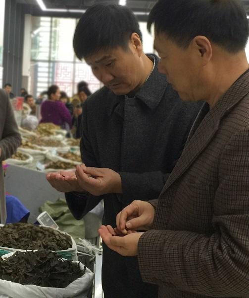 Zhang and Wang in market