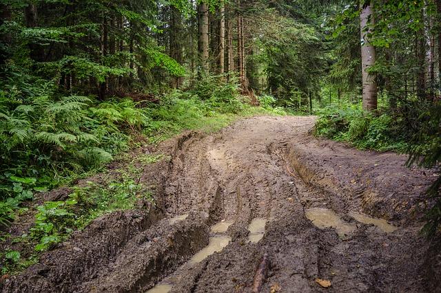 2019 Mud
