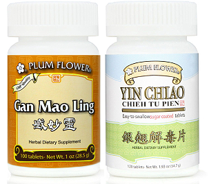 Gan Mao Ling & Yin Chiao
