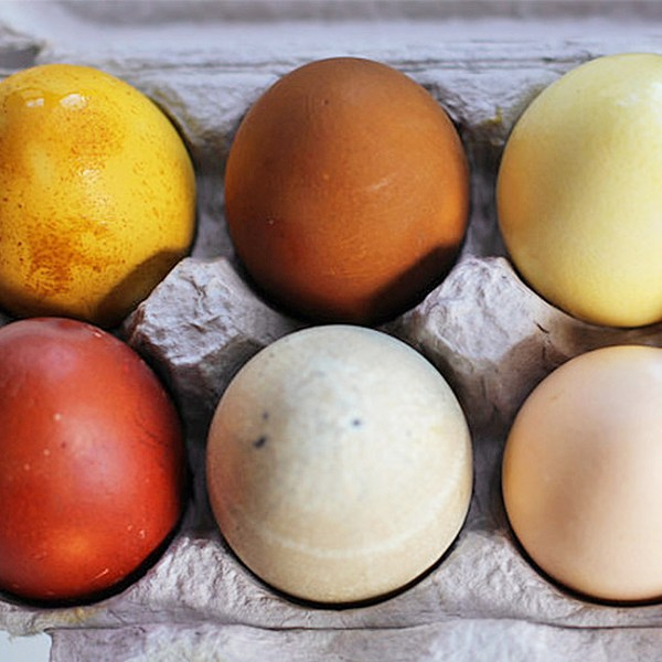 Herbal Easter Egg Dyeing