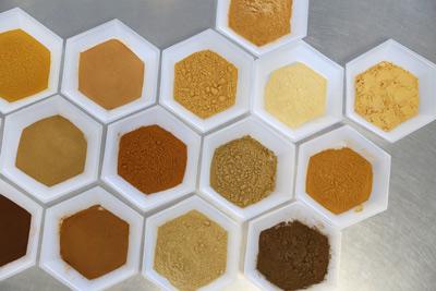 Extract Powders