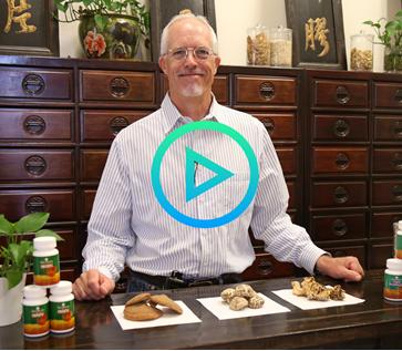 Herbalist Corner: Medicinal Mushrooms