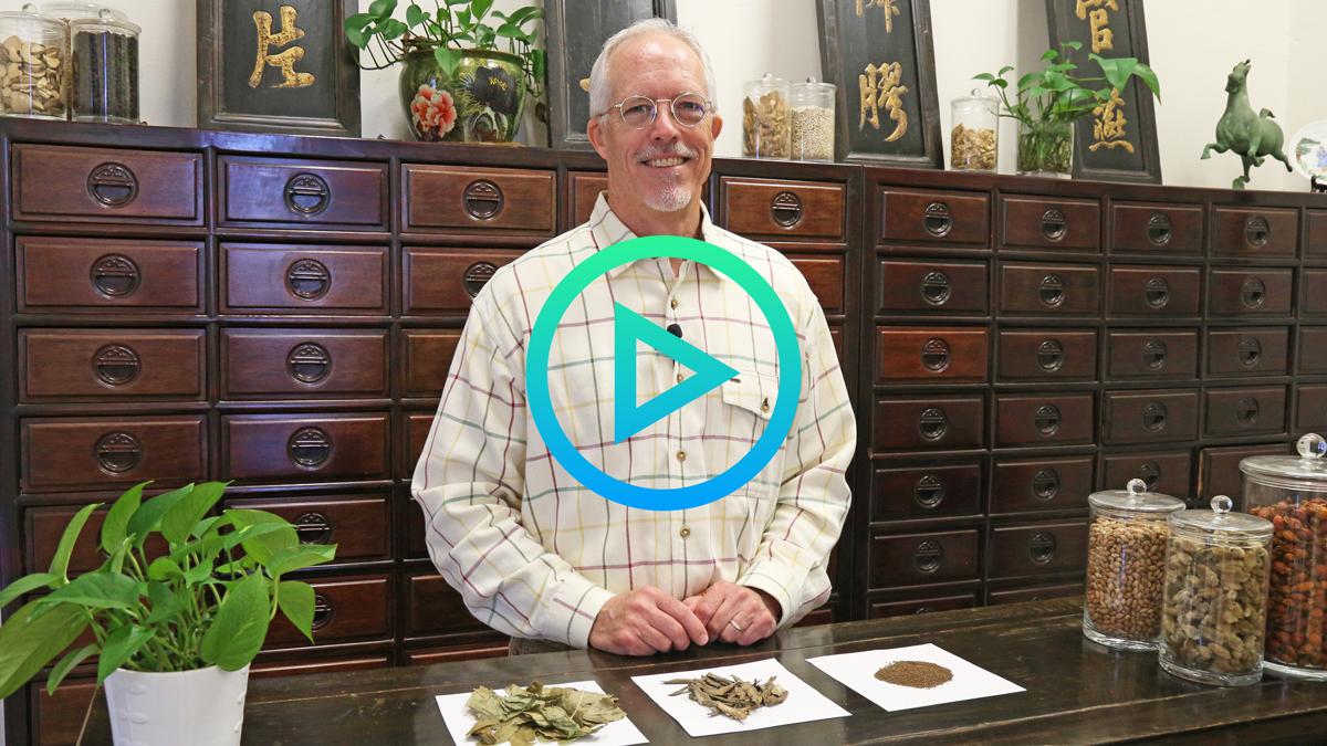 Herbalist Corner Yin Yang Huo Xu Duan Ti Si Zi video