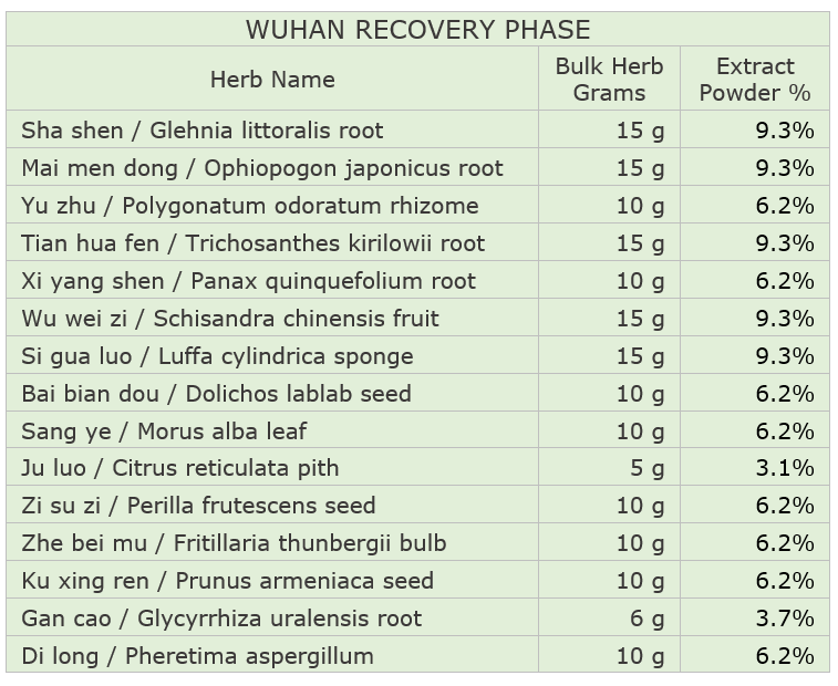 Wuhan Recovery Phase