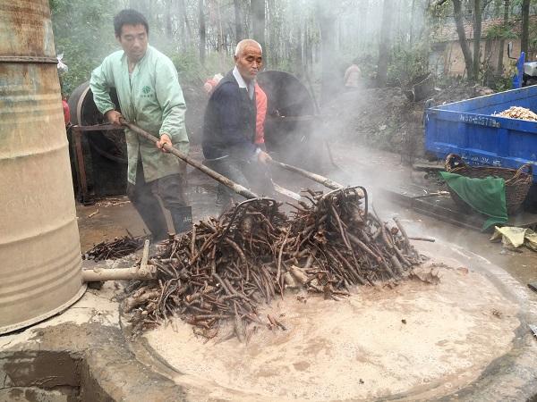 Bai Shao Processing