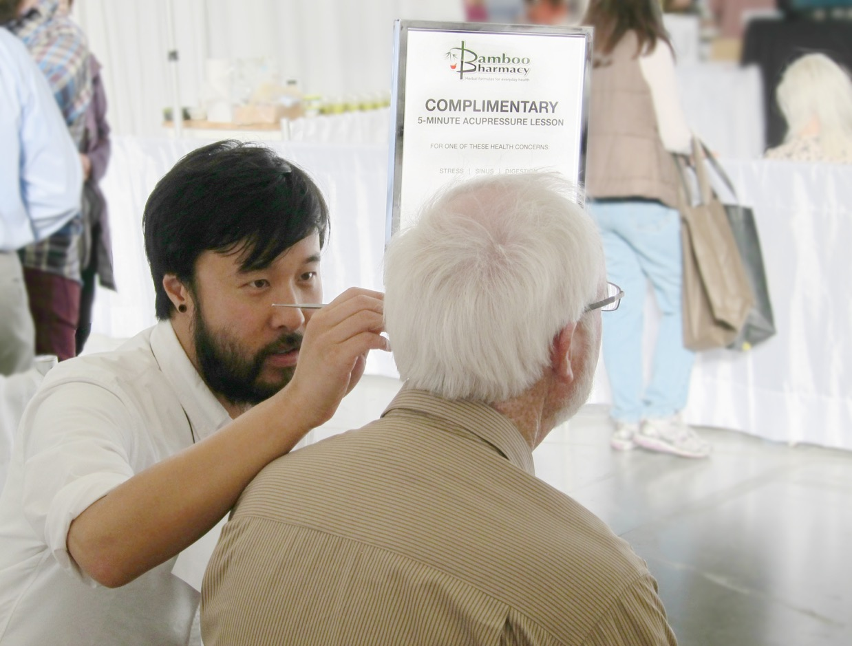 Acupressure at Green Festival