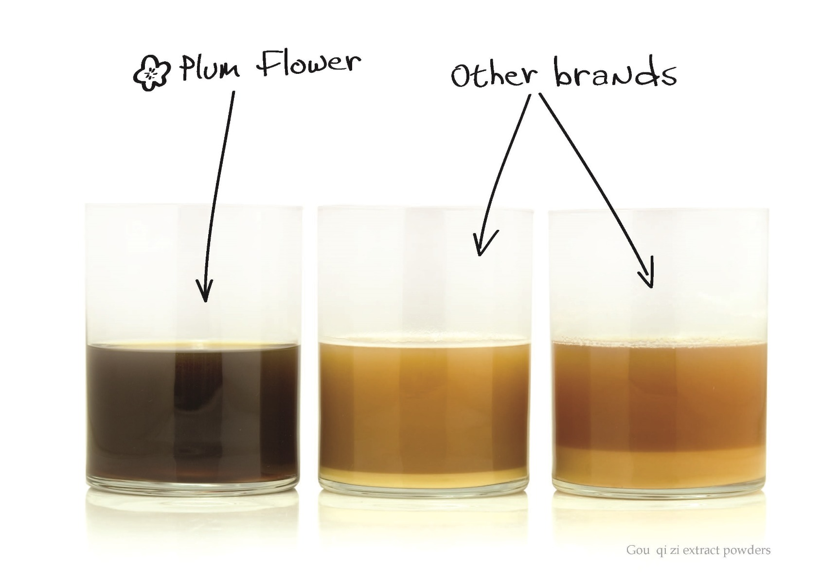 Plum Flower extract powder no filler