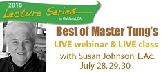 Susan Johnson Best of Master Tung