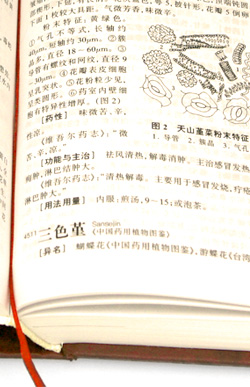 Page from Pharmacopoeia of Chinese Medicine